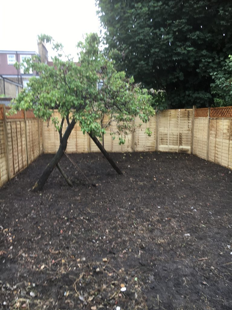 East Dulwich – Back garden renovation